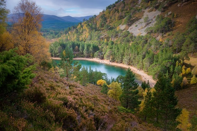 Lochan Uaine in the Glenmore Forest, Aviemore. Photo by Visit Scotland