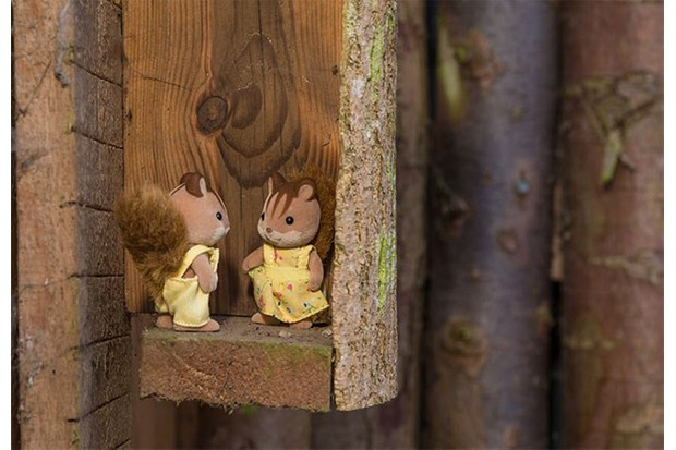 Sylvanian's woodland creatures include these cute squirrels.