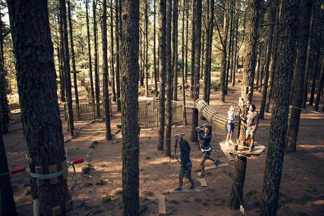 Adventures in the tree tops at Forestal Park. Photo: Tenerife Tourism Corporation