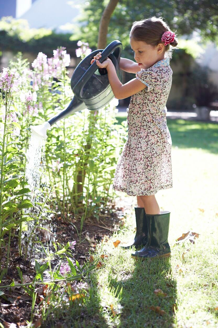 Plants to choose for the perfect family garden