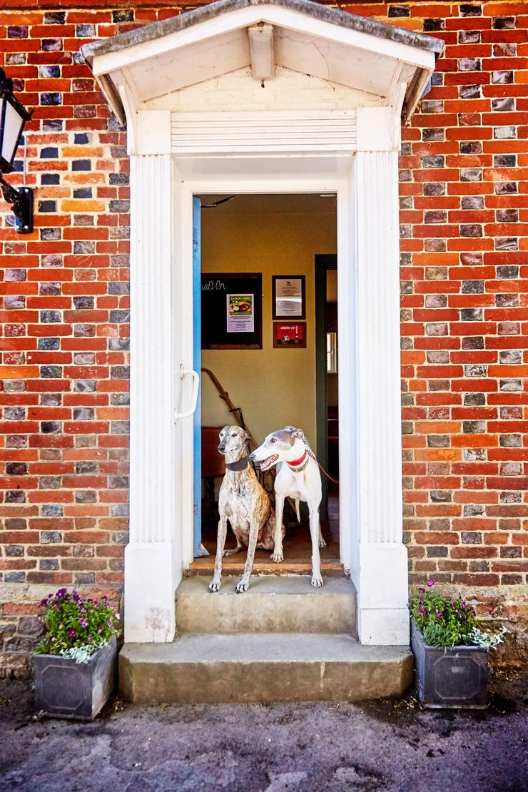 The Greyhound in Letcombe Regis: A cozy couples getaway