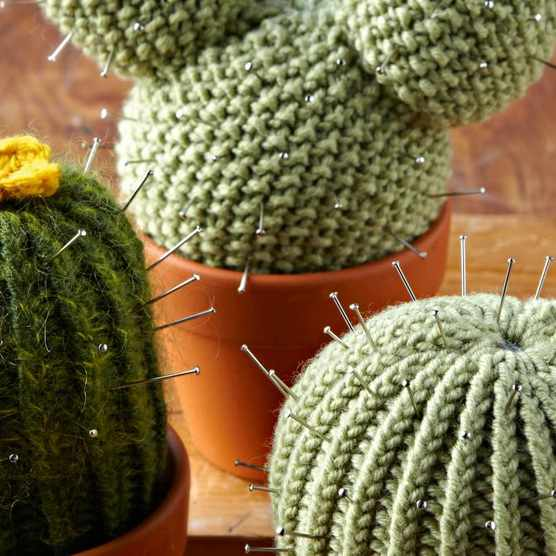 Free knitted cactus pattern