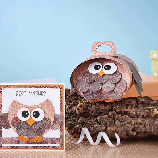 Free owl gift box and gift ideas templates
