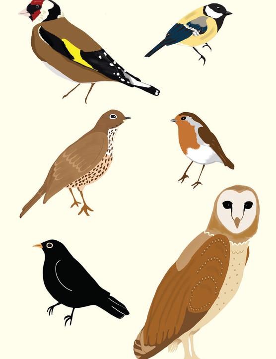 Free bird printables