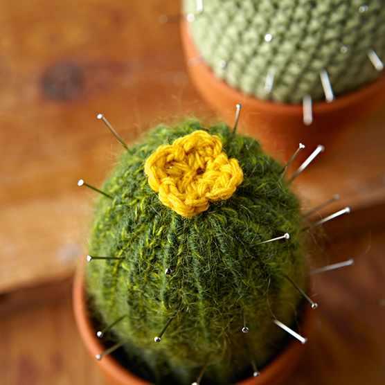 Tall knitted cactus pattern