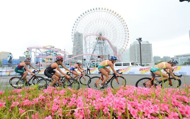 Women triathletes racing at WTS Yokohama
