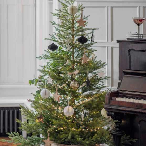 A real Christmas tree next to a piano