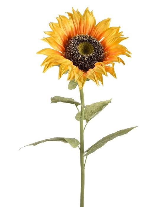 Sunflower Stem by Wayfair
