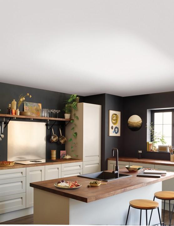 Black and white kitchen ideas