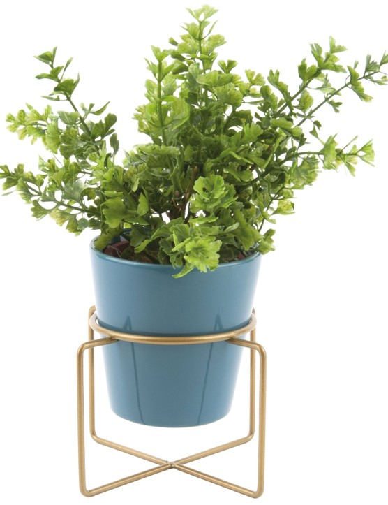 Bring the outdoors in and help improve the air quality with a few leafy house plants. Present Time Small Coy ceramic plant pot, £9, Cult Furniture