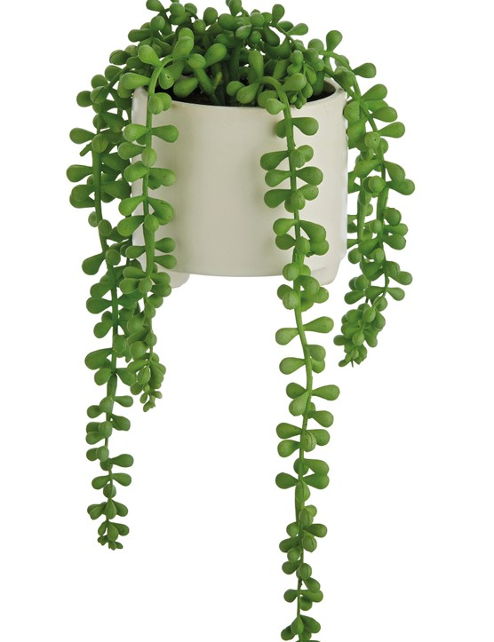 Faux plants are maintenance free and always look good. Trailing House Faux Plant, £8, Argos Home