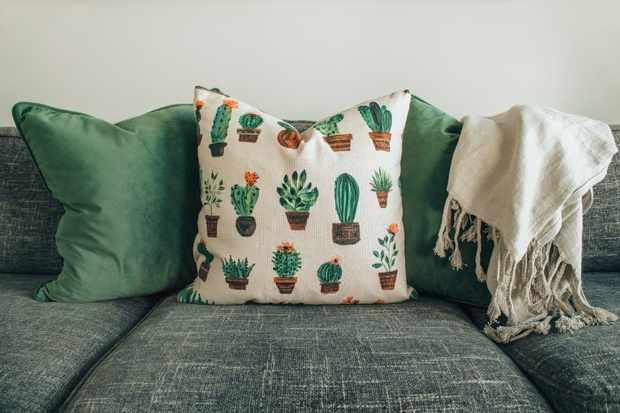 Cushions - pexels-designecologist