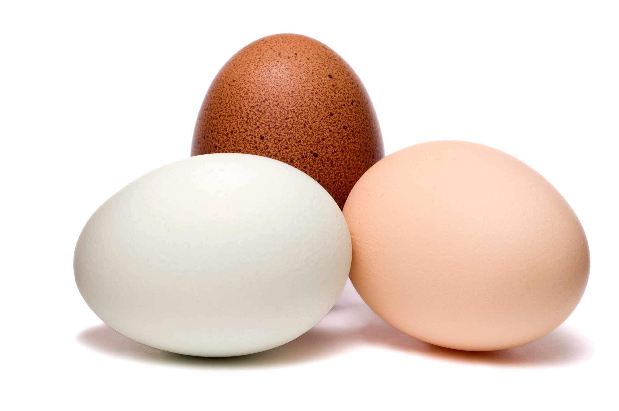 What determines if an egg is brown or white? © Getty Images