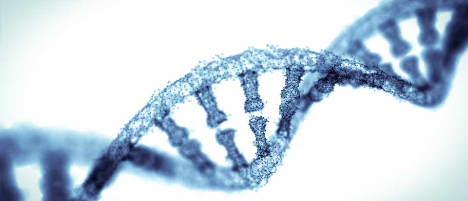 What is junk DNA? © Getty Images