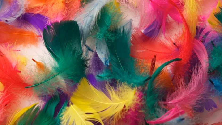 Why does one kilogram of feathers have more mass than one kilogram of iron? © Getty Images