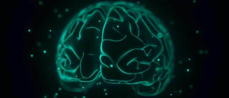 Is there any scientific evidence to support neuro-linguistic programming (NLP)? © Getty Images