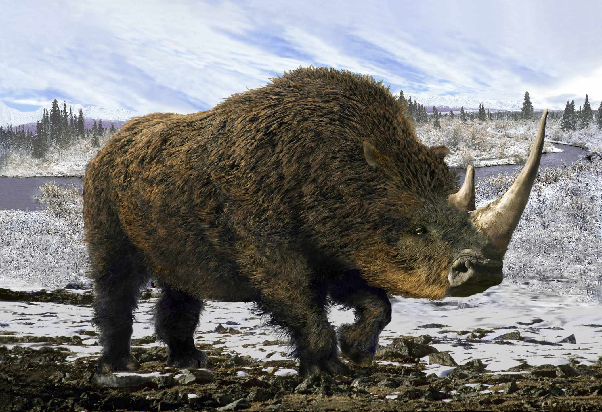 What did mammals evolve from? © Getty Images