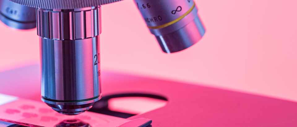 What is the most powerful microscope? © Getty Images