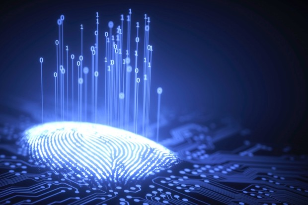 What determines your fingerprint pattern? © Getty Images