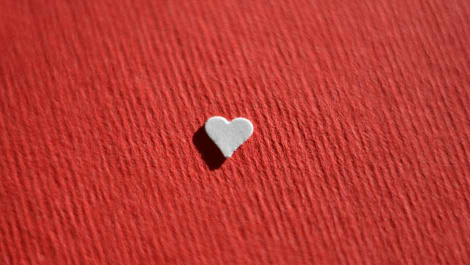 Which animal has the smallest heart? © Getty Images
