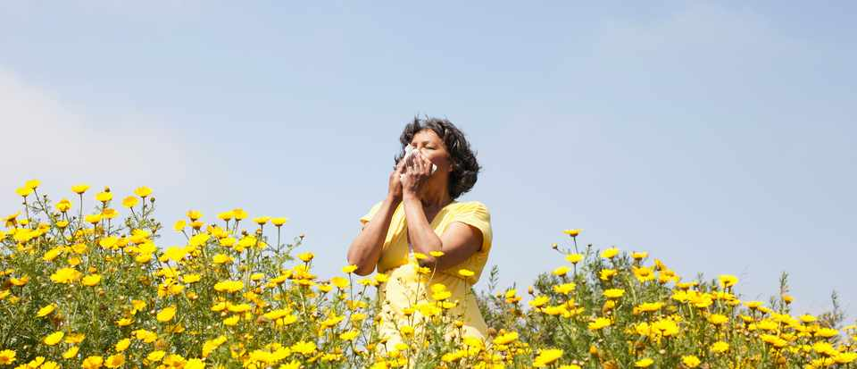 Are air pollutants increasing allergies? © Getty Images