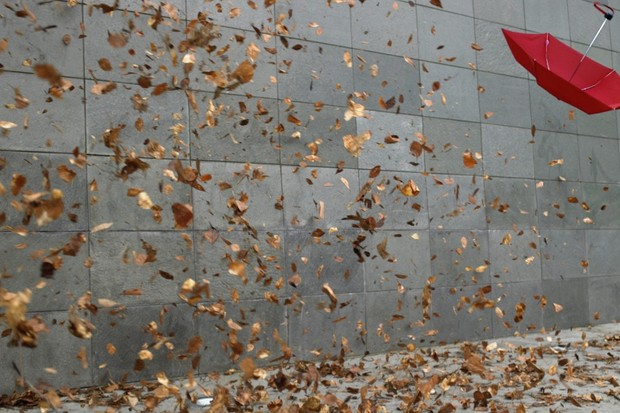 Why do leaves in autumn blow into tornadoes on the street? © Getty Images