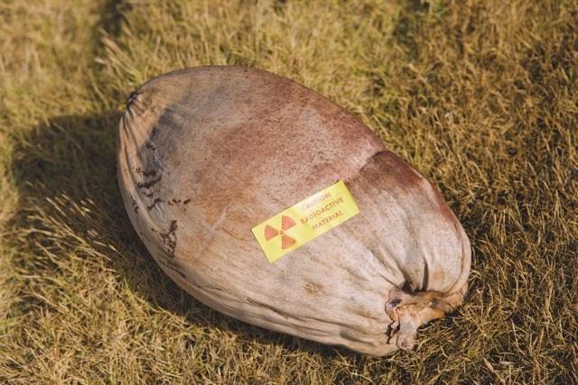 A radioactive coconut © Robert Harding