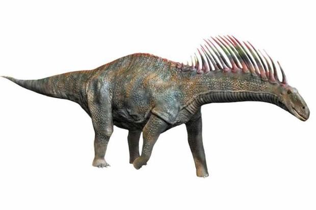 Amargasaurus By © N. Tamura | http://spinops.blogspot.com | http://paleoexhibit.blogspot.com - http://spinops.blogspot.com/2015/11/amargasaurus-cazaui.html, CC BY-SA 4.0, Link