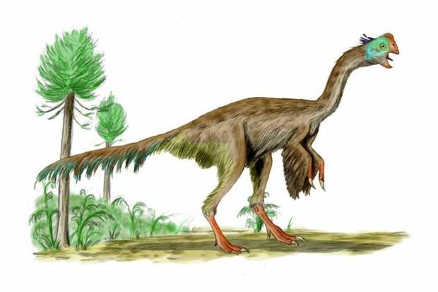 Gigantoraptor by Nobu Tamura - CC BY-SA 1.0, Link