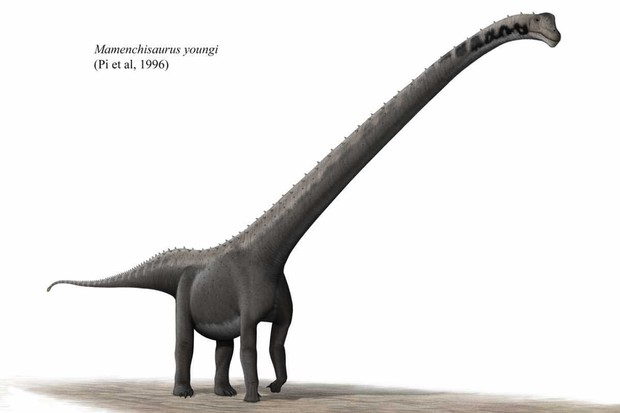 Mamenchisaurus by Steveoc 86, CC BY-SA 2.5, from Wikimedia Commons