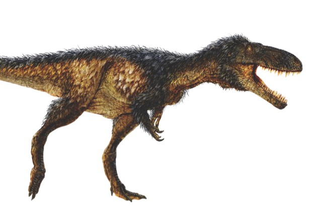 Timurlengia euotica had a similar brain to the T. rex, but was only about the size of a horse © Todd Marshall