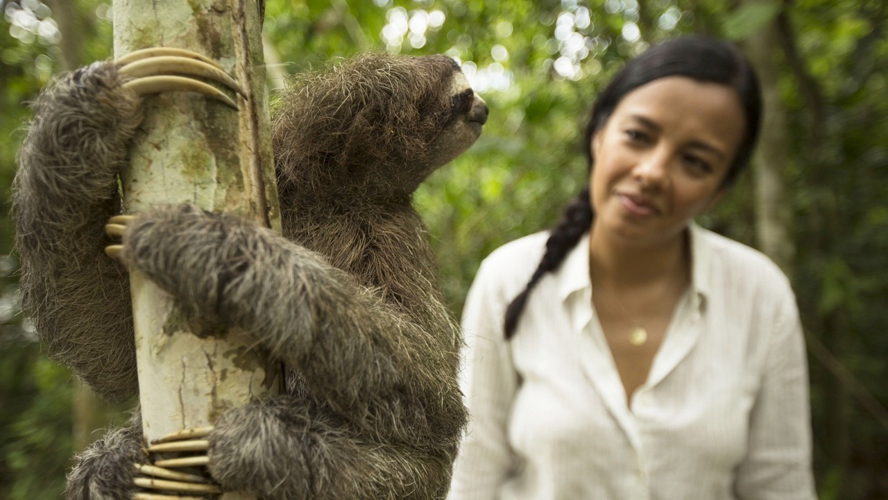 Liz Bonnin with a three-toed sloth © BBC NHU/Stuart Dunn