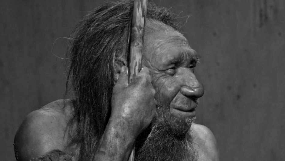 Did humans and Neanderthals interbreed? © Alamy