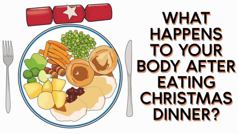 What happens to your body after eating Christmas dinner?