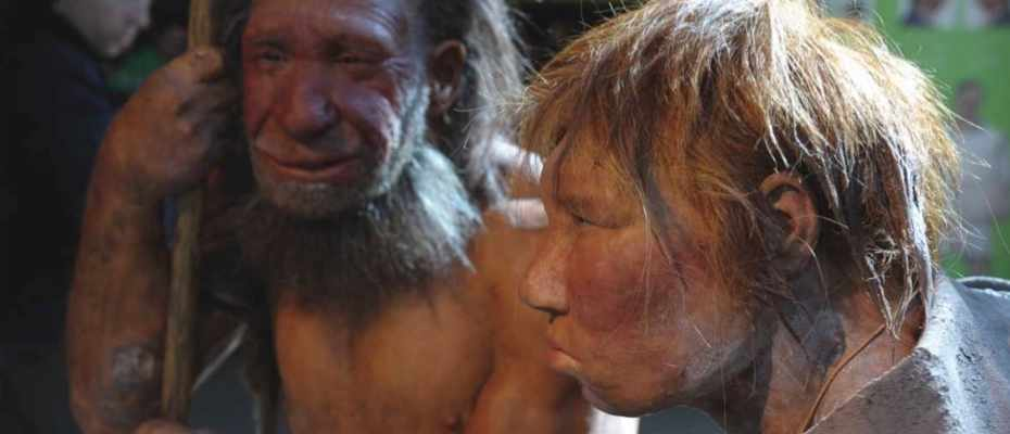 Could we clone a Neanderthal? © Alamy