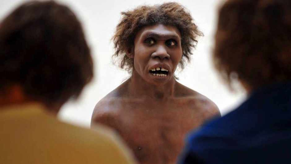 Could Neanderthals speak? (Neanderthal man on display at the National Museum of Prehistory, Eyzies-de-Tayac, France © Pierre Andrieu/AFP/Getty Images)