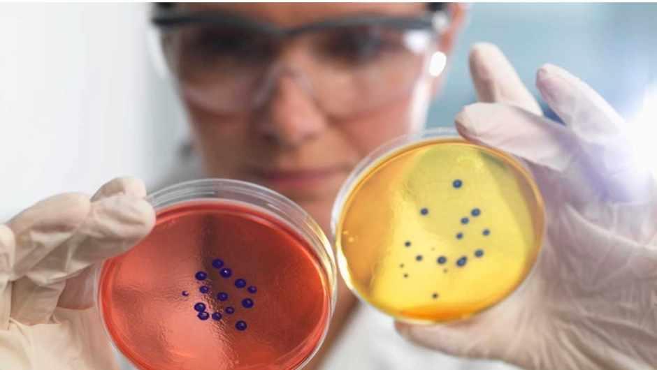 How do antibiotics work? © Getty Images