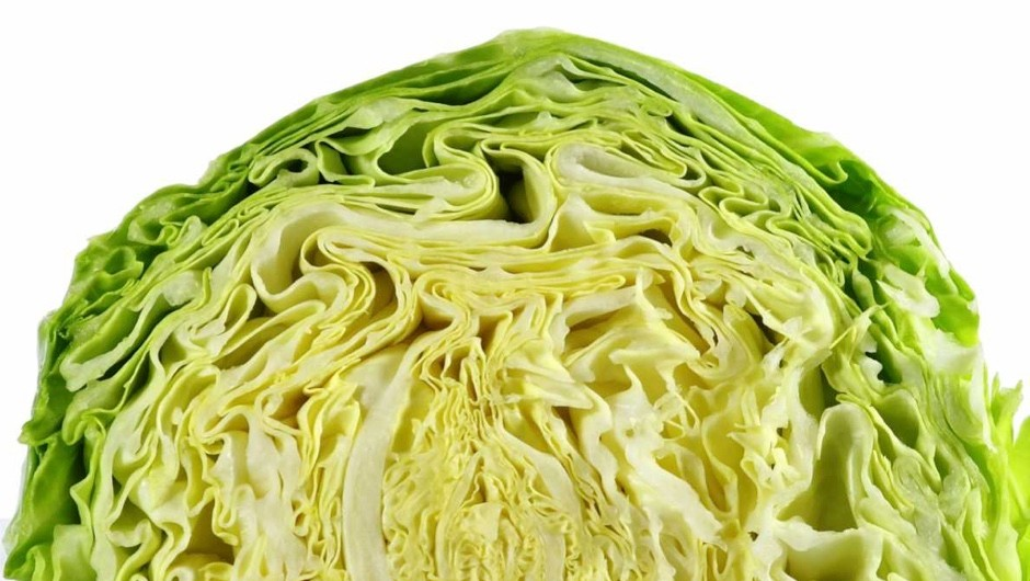 Do cabbage leaves cure mastitis? © Getty Images