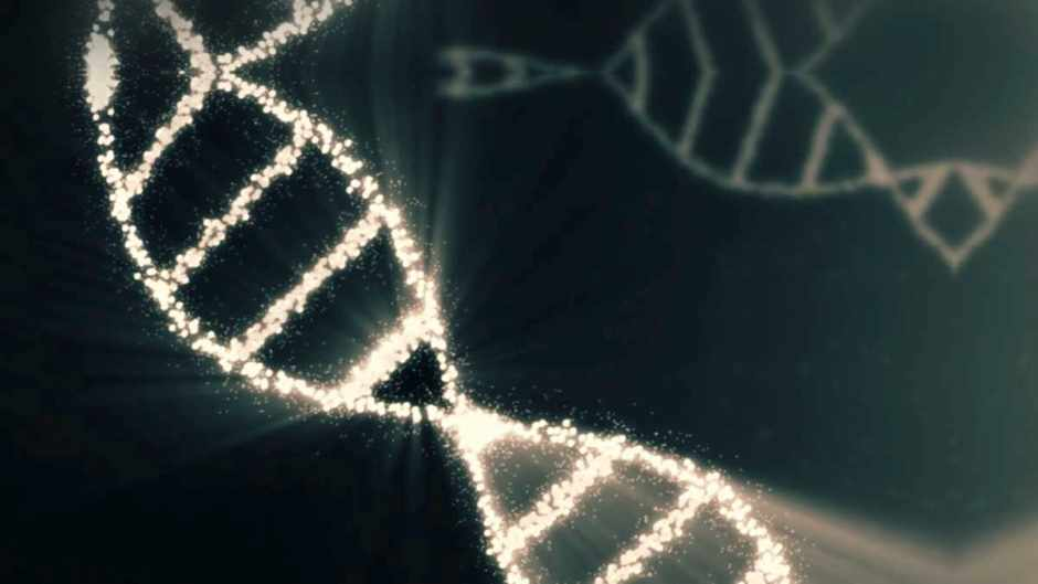 Who really discovered DNA? © Getty Images