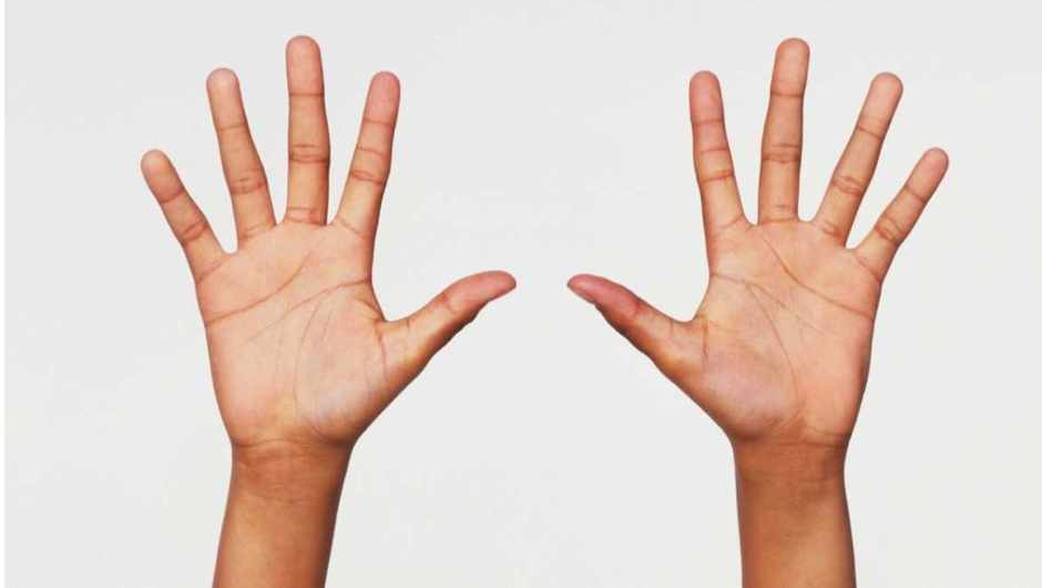 why do we have lines on the palms of our hands science focus