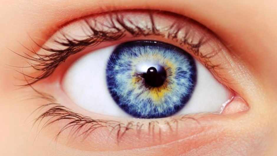 Why does your iris have a colour? © iStock