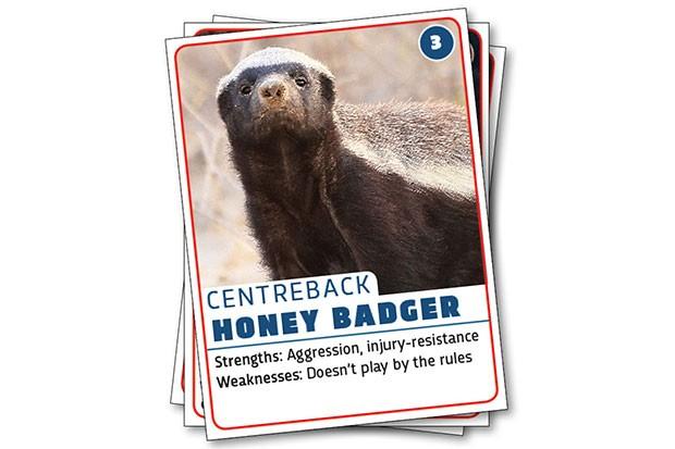 Honey badger © Getty Images