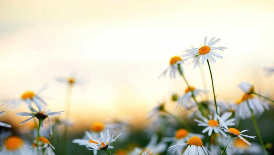 Is there more oxygen in the air in the summer? © iStock