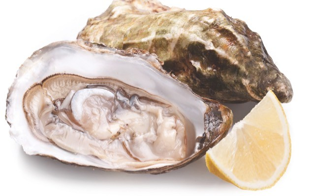 Oysters © iStock