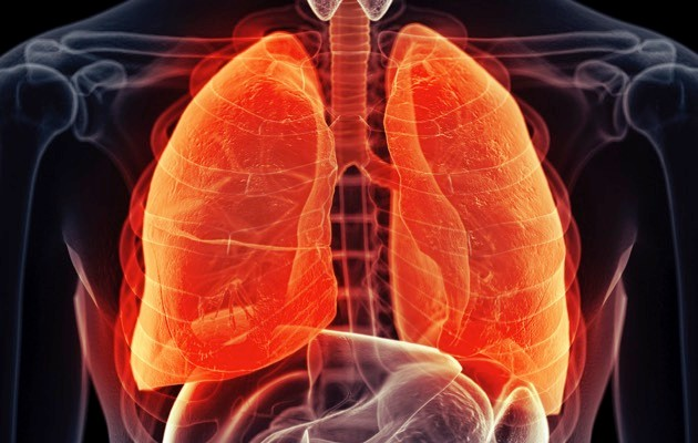 Lung © iStock