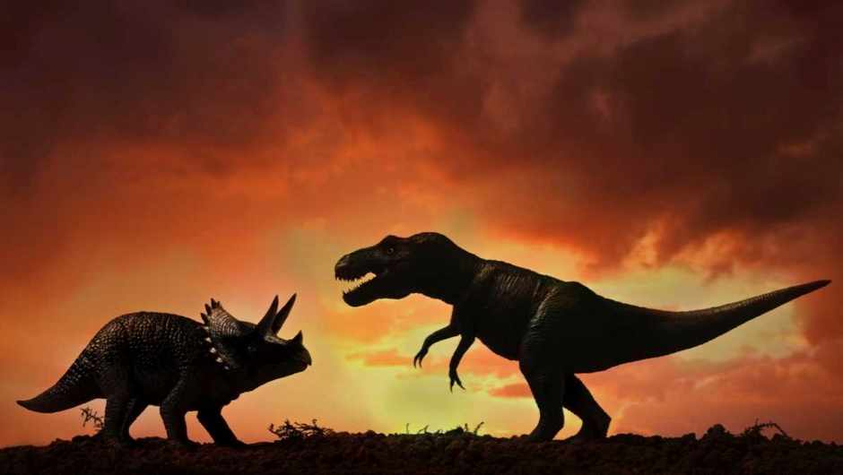Why were prehistoric animals so much bigger? © iStock
