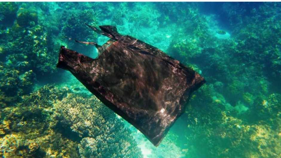 How do we know that plastic bags take 500 years to ...