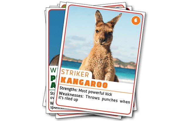 Kangaroo © Getty Images