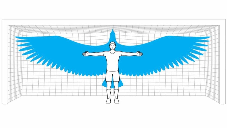 If humans had wings, what would their wingspan be?