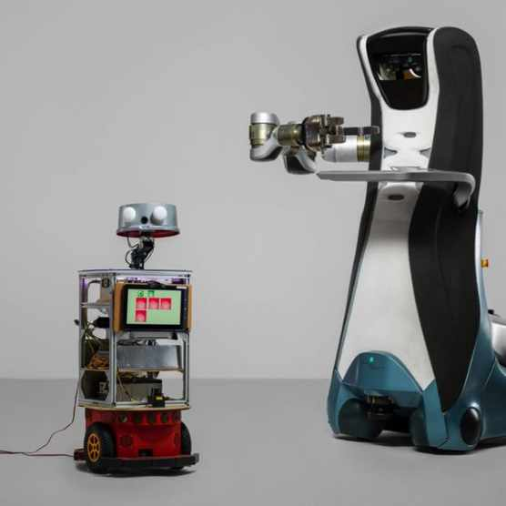 The robots that care for the elderly